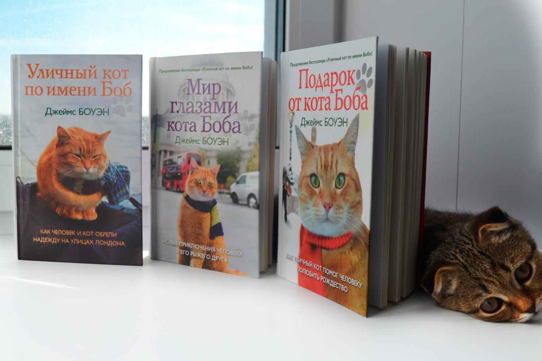 Серия книг о коте Бобе. Джеймс Боуэн.