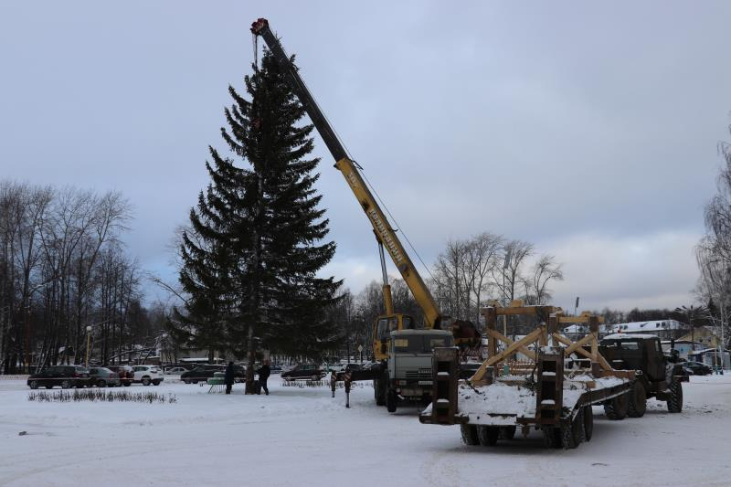На главной площади города установили красавицу-елку