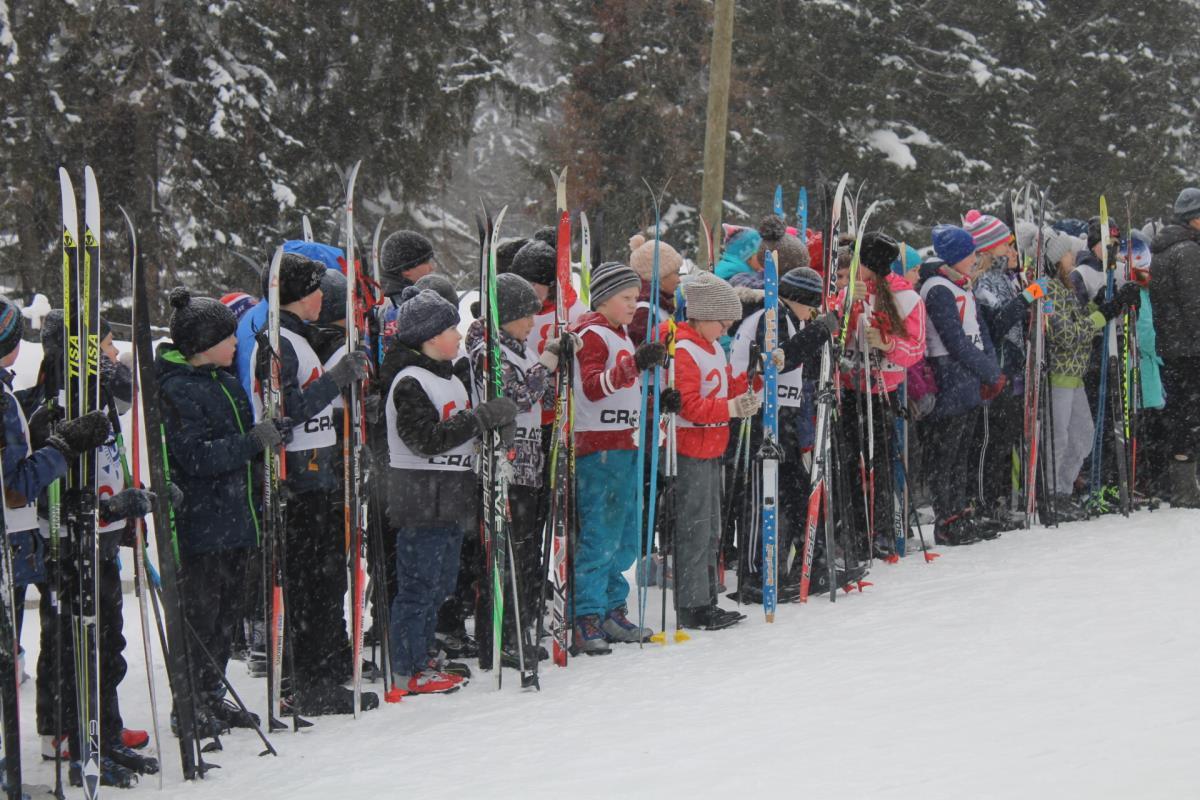 Школьники вышли на лыжню
