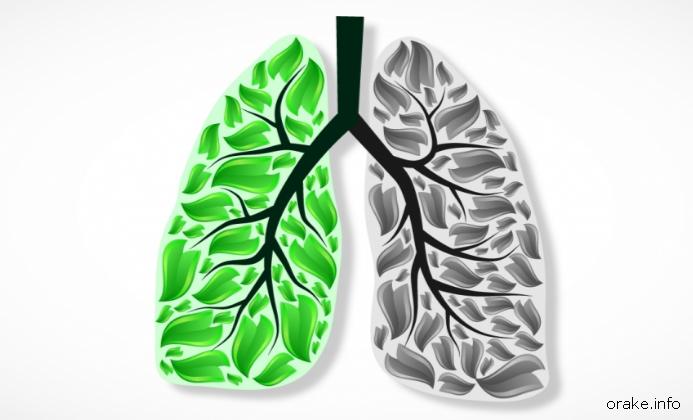 Сохраним здоровье легких