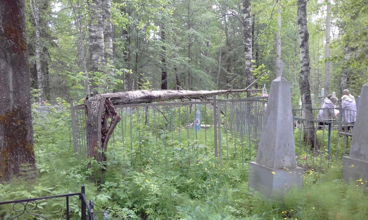 Порядок на кладбище – чья забота?