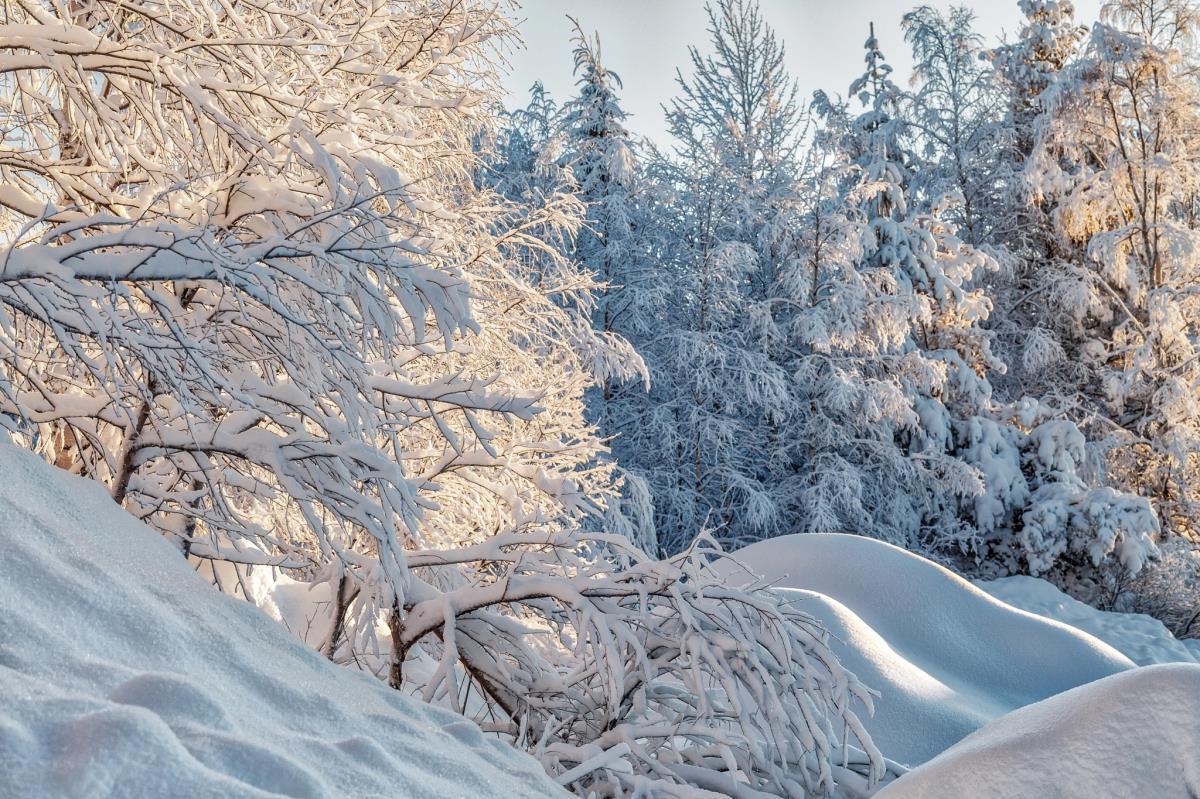 Зимние метели побили рекорд