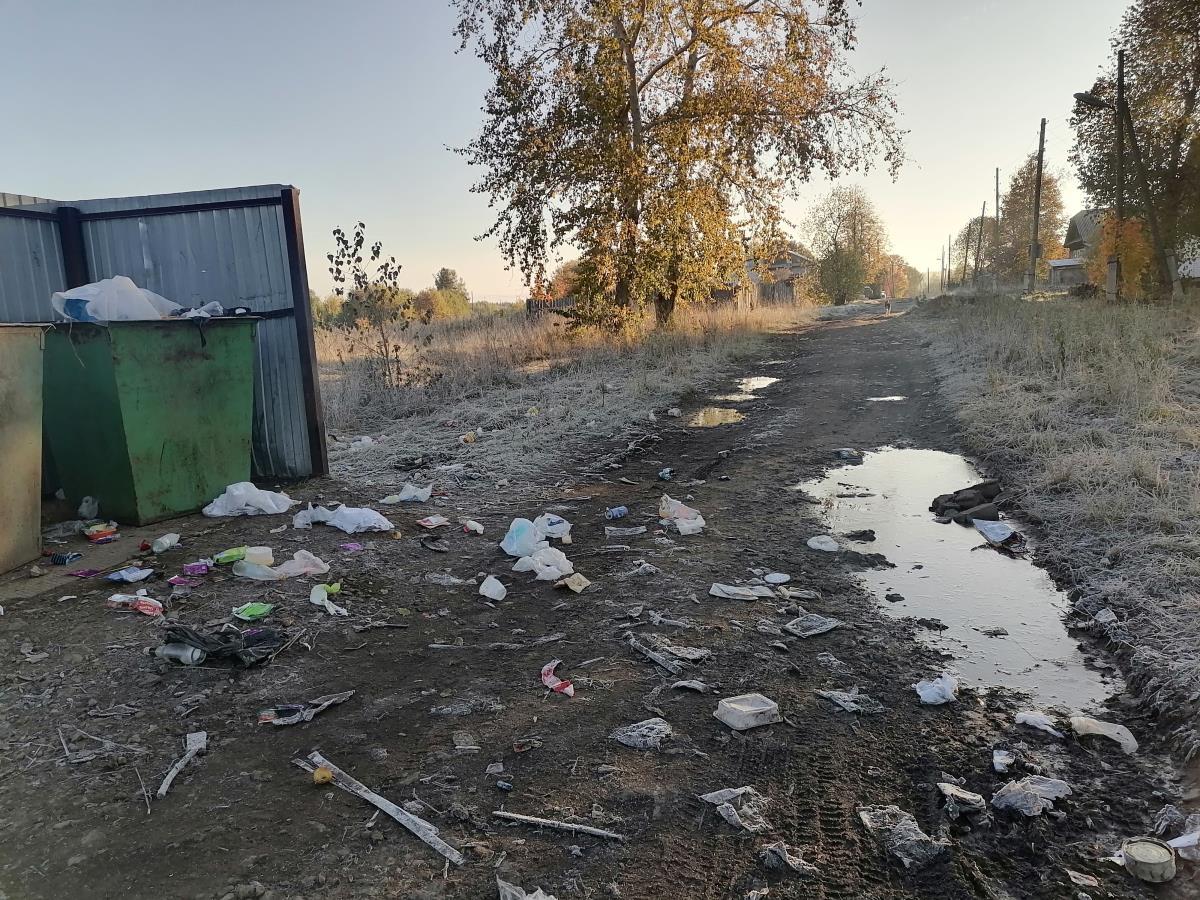Как бороться за чистоту своего города?