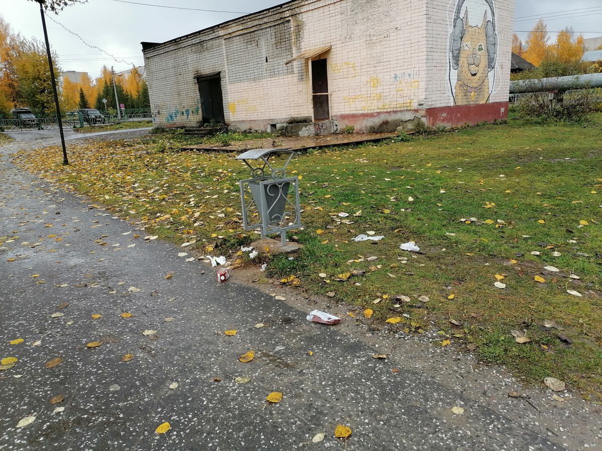 Кто должен убирать мусор из урн в парке?